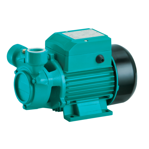 Regenerative Peripheral Pumps South Africa